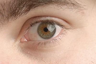 prod03, face, face, person, man, eye, eyes, green,