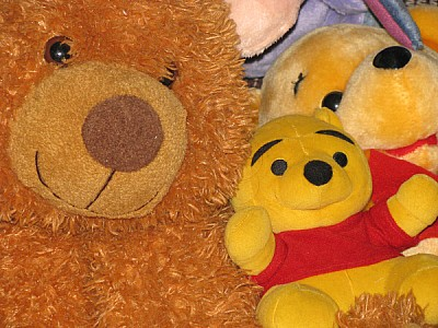 free images  teddy, teddies, bear, bears, cozy, soft, tender, c