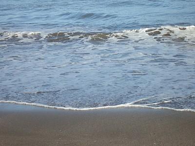 free images  Beach shore Costa Atlantica Argentina