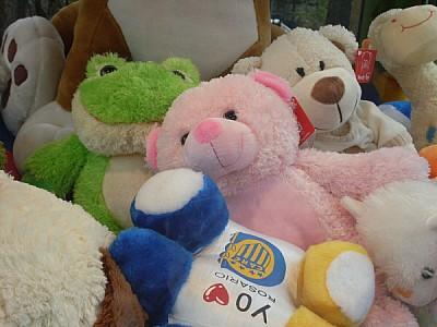 free images  teddy, teddies, bear, bears, cozy, soft, tender, c