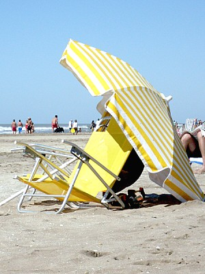free images  Argentina, atlantic coast, summer, day, outdoor, o
