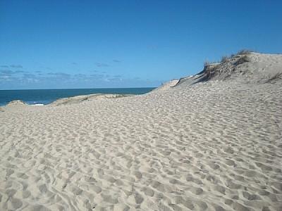 beach, coast, floor support, sand, nobody, ocean,