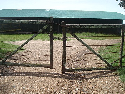 field, rural scene, Argentina, front view, gate, d