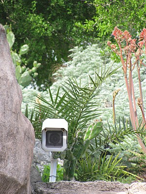 prod06, camera, security, surveillance, nobody, mo