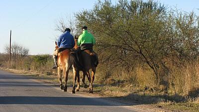 prod06, Argentina, field, rural scene, back view,