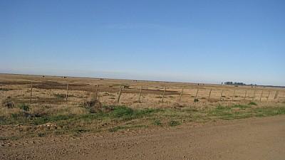 prod06, field, rural scene, front view, no street