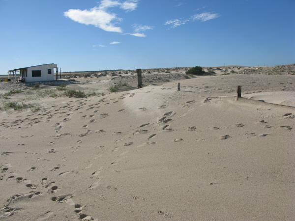 south america, south america, america, Uruguay, polonium out, coast, beach, day, outdoor, outside, summer, vacation, warm, water, single, solitary, footprint, footprints, sand, dunes, Medano, dune, dunes, home construction, tranquility, nobody,