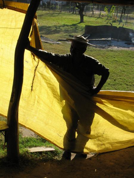 one person, people, man, gaucho, field, rural scene, Argentina,